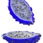 Buah Naga Biru