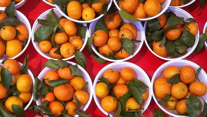 Jeruk Mandarin Kecil